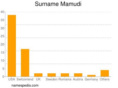 Surname Mamudi