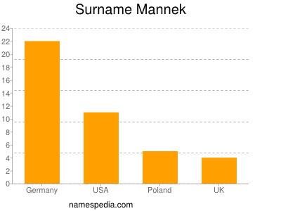 Surname Mannek