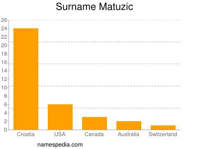 Surname Matuzic