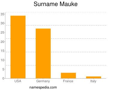 Surname Mauke