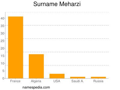 Surname Meharzi