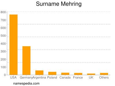 Surname Mehring