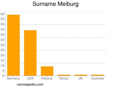 Surname Meiburg