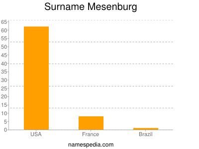 Surname Mesenburg