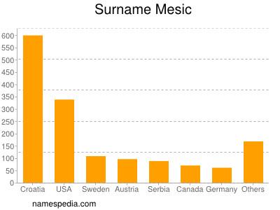 Surname Mesic