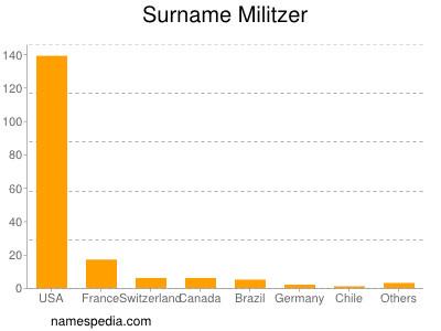 Surname Militzer