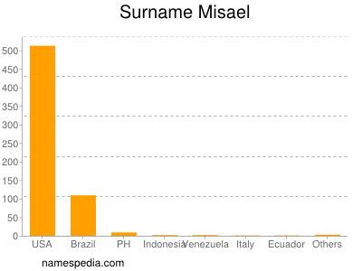 Surname Misael
