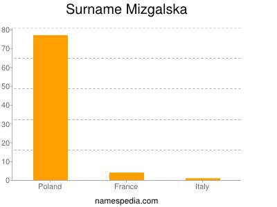 Surname Mizgalska