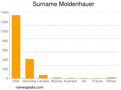 Surname Moldenhauer