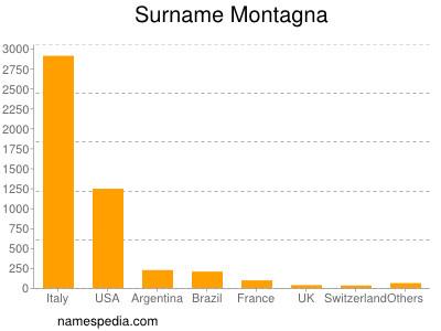 Surname Montagna