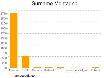 Surname Montagne