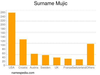 Surname Mujic