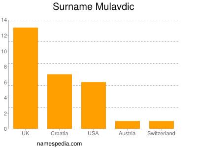 Surname Mulavdic