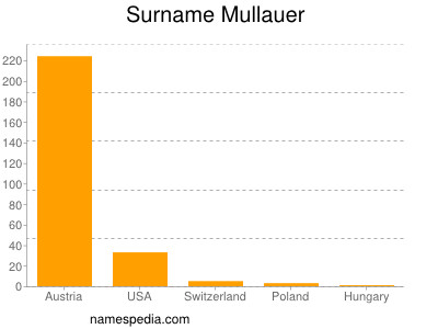 Surname Mullauer