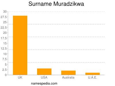 Surname Muradzikwa