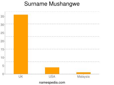 Surname Mushangwe