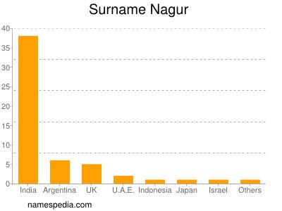 Surname Nagur
