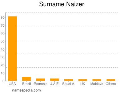 Surname Naizer