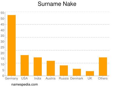 Surname Nake