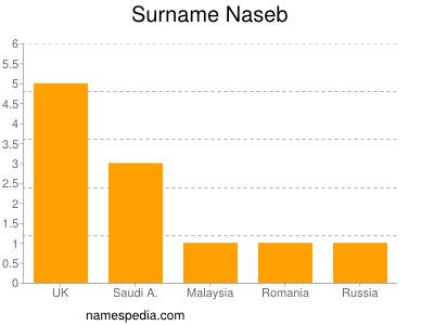 Surname Naseb