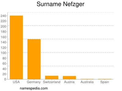 Surname Nefzger