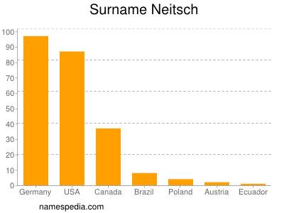 Surname Neitsch