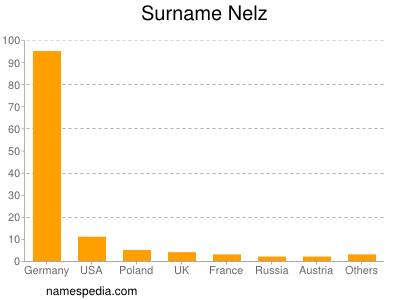Surname Nelz