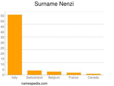 Surname Nenzi