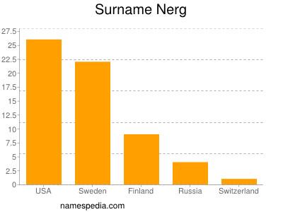 Surname Nerg