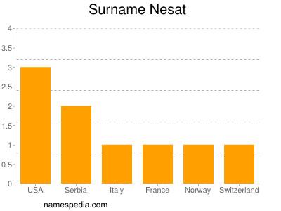 Surname Nesat