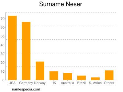 Surname Neser
