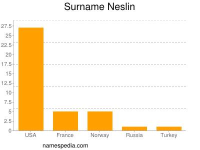 Surname Neslin