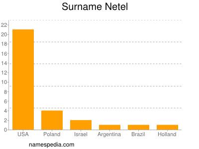 Surname Netel