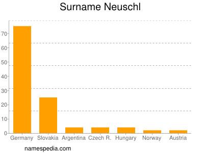 Surname Neuschl