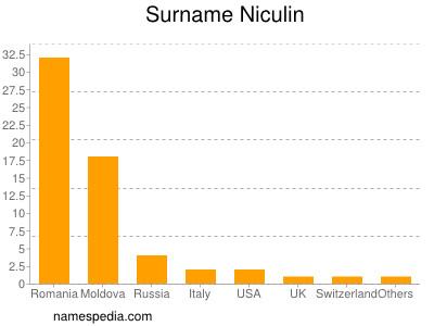 Surname Niculin