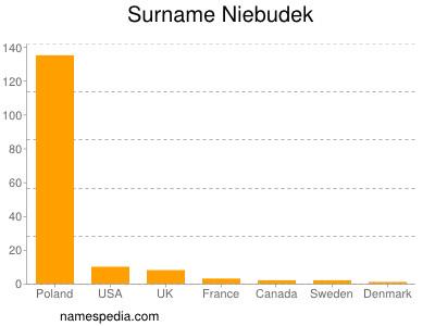 Surname Niebudek