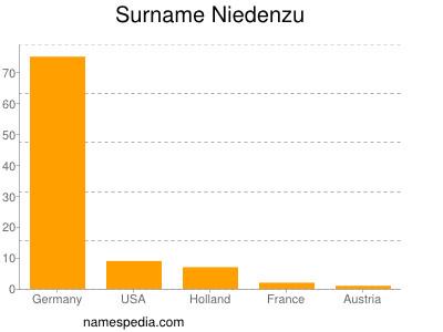 Surname Niedenzu