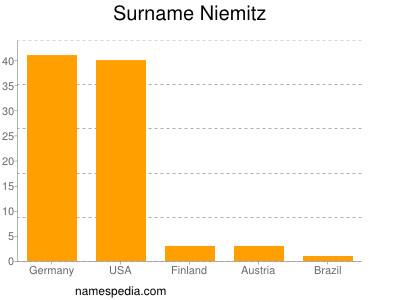 Surname Niemitz
