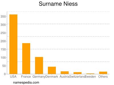 Surname Niess
