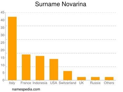Surname Novarina