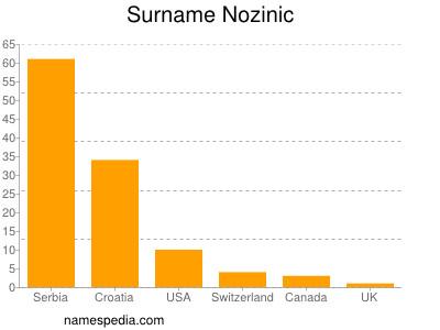 Surname Nozinic