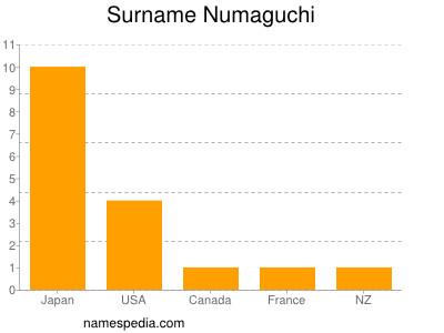 Surname Numaguchi