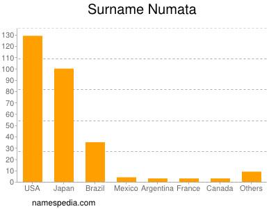 Surname Numata