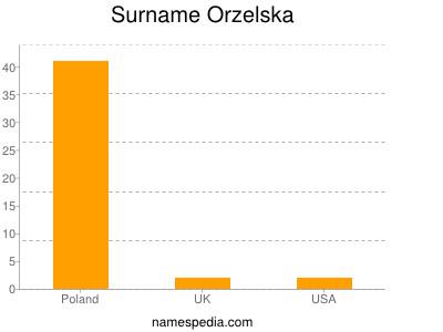Surname Orzelska