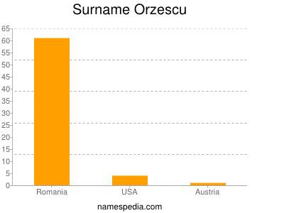 Surname Orzescu