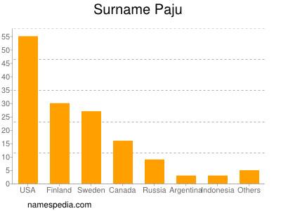 Surname Paju