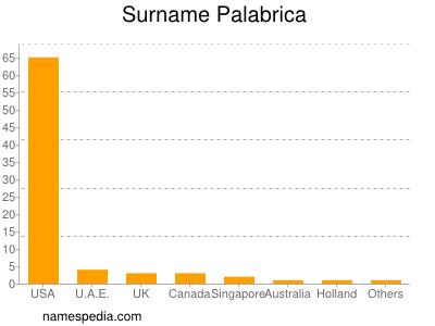 Surname Palabrica