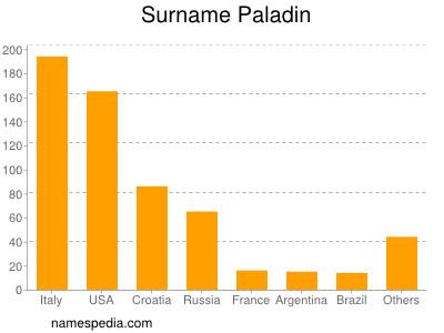 Surname Paladin