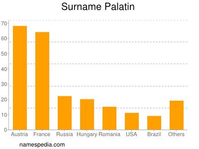 Surname Palatin