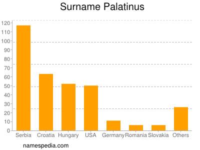 Surname Palatinus